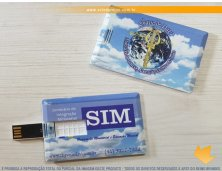 12098 - Pen Drive Card